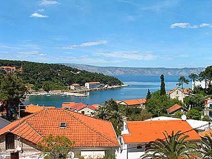 sea view (house and surroundings) - 00403JELS A1(2+2) - Jelsa - Jelsa - rentals
