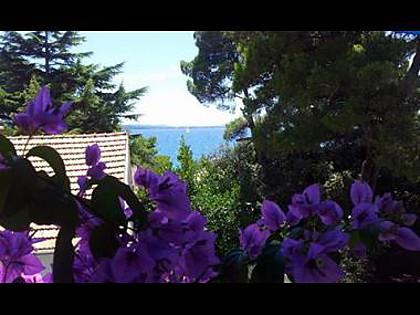 A1(3+1): terrace view - 2548 A1(3+1) - Petrcane - Petrcane - rentals