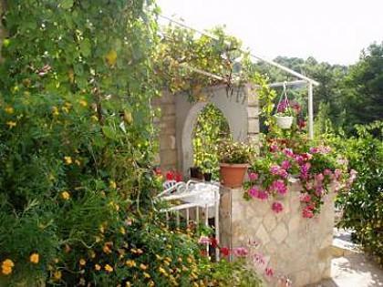 greenery (house and surroundings) - 2869 A2(6+2) - Rogac - Rogac - rentals