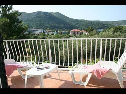 H(10): terrace view - 2926 H(10) - Slano - Slano - rentals