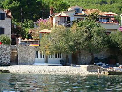 house - 2930  A1(6) - Arbanija - Arbanija - rentals