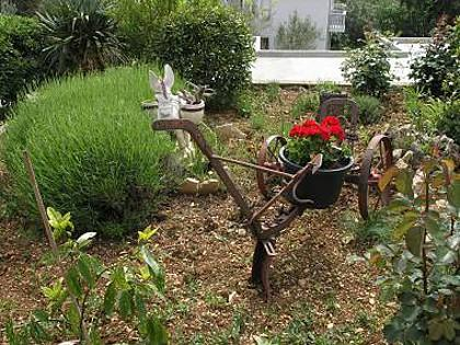 garden (house and surroundings) - 2962 A2(2+2) - Barbat - Barbat - rentals
