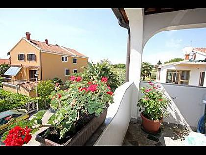 A3 prvi kat do ulice (2+1): terrace - 3277 A3 prvi kat do ulice (2+1) - Novigrad - Novigrad - rentals