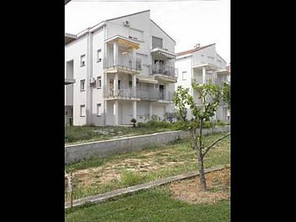 house - 4125 B1(2+1) - Petrcane - Petrcane - rentals