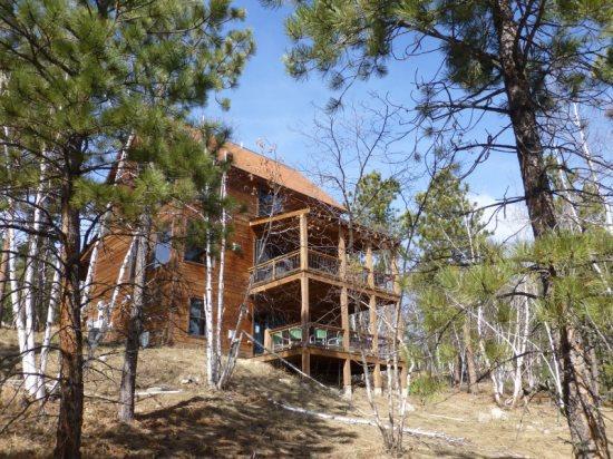 Wandering Star Cabin - Image 1 - Lead - rentals