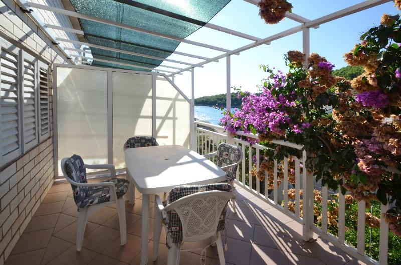 Apartmant Lara on island of korcula - Apartment Lara - Blato - rentals