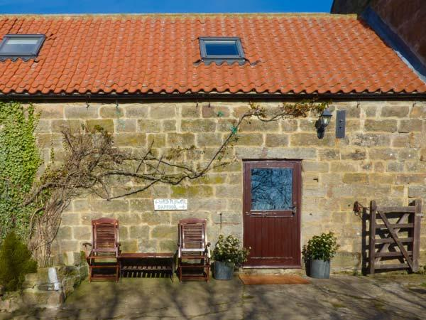 DAFFODIL COTTAGE, pet friendly, character holiday cottage, with a woodburner and garden in Danby, Ref 1575 - Image 1 - Danby - rentals