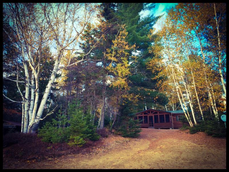 Adirondack Lake front Cabin with beach - Image 1 - Indian Lake - rentals