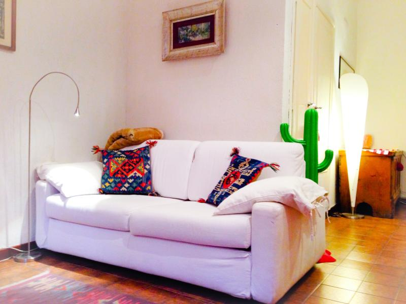 Living with pull out couch - COLOSSEUM: RomAntica INN apartment - Rome - Rome - rentals