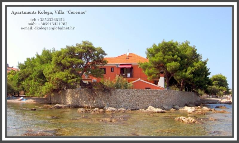 Apartments Kolega, Vila Cerenac - Apartments Kolega, Villa Čerenac - Place where relaxation is all about ! - Preko - rentals