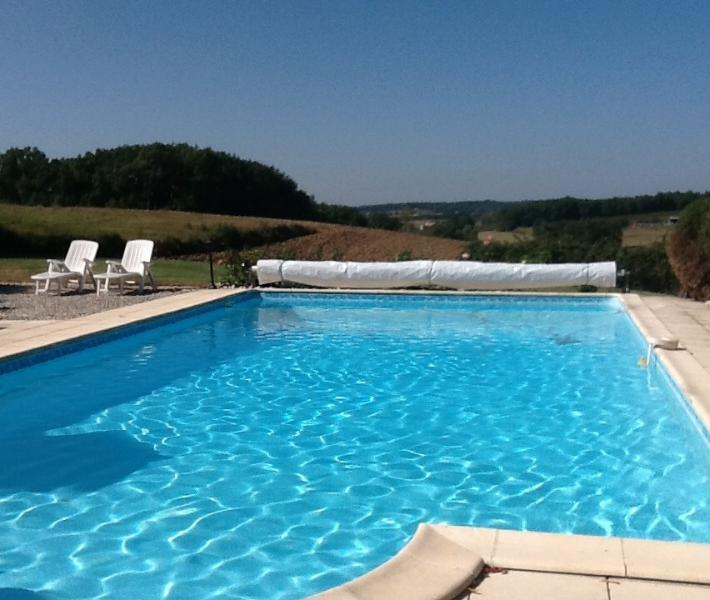 swimming pool - Peaceful house with pool, near Bergerac and Eymet - Bergerac - rentals