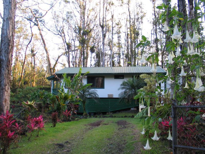 Hale Ohia Nui - Hale Ohia Nui - Pahoa - rentals