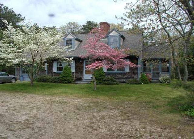 COMFORTABLE SPACIOUS CAPE W/ A GREAT BRICK PATIO FOR RELAXING & ENTERTAINING - Image 1 - Edgartown - rentals