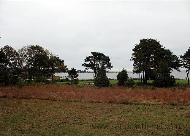 Beautiful four bedroom house in the Farm Neck area of Oak Bluffs - Image 1 - Oak Bluffs - rentals