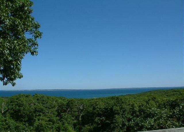 CHARMING HOME W/VIEWS OF VINEYARD SOUND & ELIZABETH ISLANDS - Image 1 - Chilmark - rentals