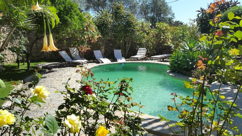 Private swimming pool - Luxurious and Captivating Country Villa - Jimena de la Frontera - rentals