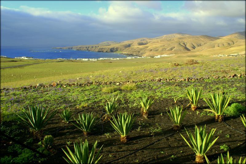 Casa Playa Quemada - Image 1 - Playa Quemada - rentals