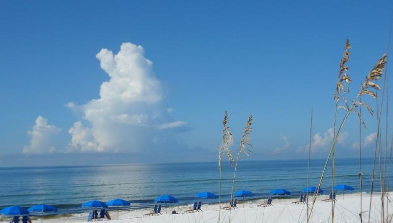 View of Ocean from pool area at island Princes FWB, FL - $ Ask $ FALL DISCOUNTS - Ocean Front - Free Chairs - Fort Walton Beach - rentals