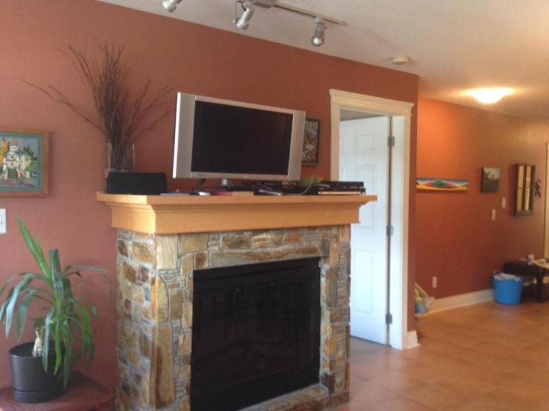 Fireplace and satellite tv - Karrys Cozy Kaslo Condo - Kaslo - rentals