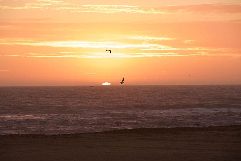 Wake up to beautiful sunrises - Oceans II 304 Virginia Beach, VA - OCEANFRONT Studio 304 . Beach and Ocean Views - Virginia Beach - rentals