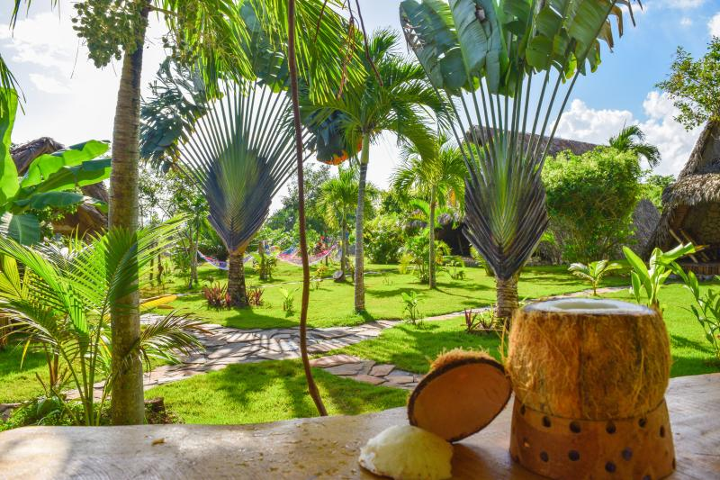 Chalet Tropical Village B&B : garden view - ChaletTropical#2 Cozy Sea-Shells Charm in Paradise - Las Galeras - rentals