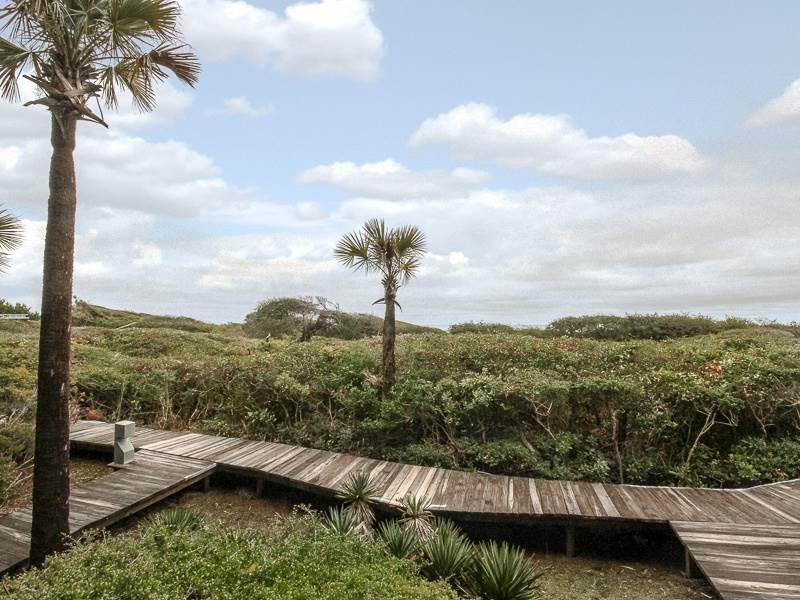 Windswept 4413 - Image 1 - Kiawah Island - rentals