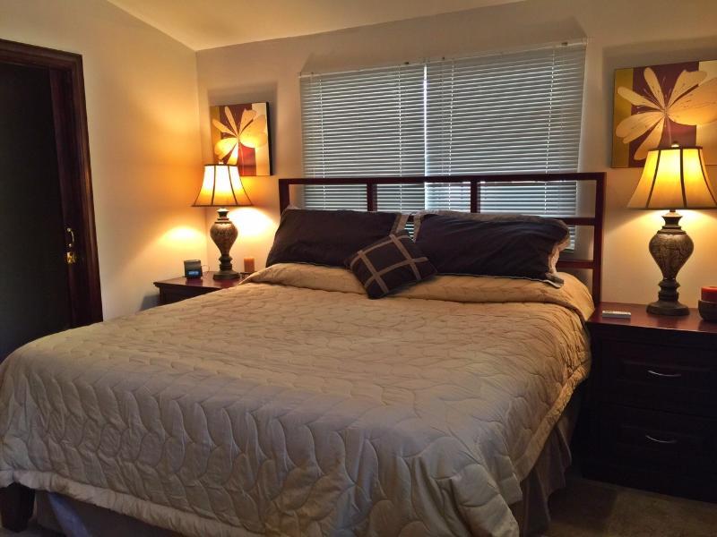 Casa Iguana luxury 2 bedroom mins. from the beach - Image 1 - Tamarindo - rentals