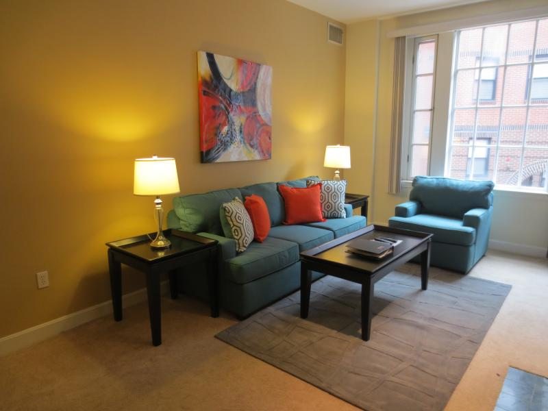 Living Room - Lux Back Bay 1BR in Post-War bldg - Boston - rentals