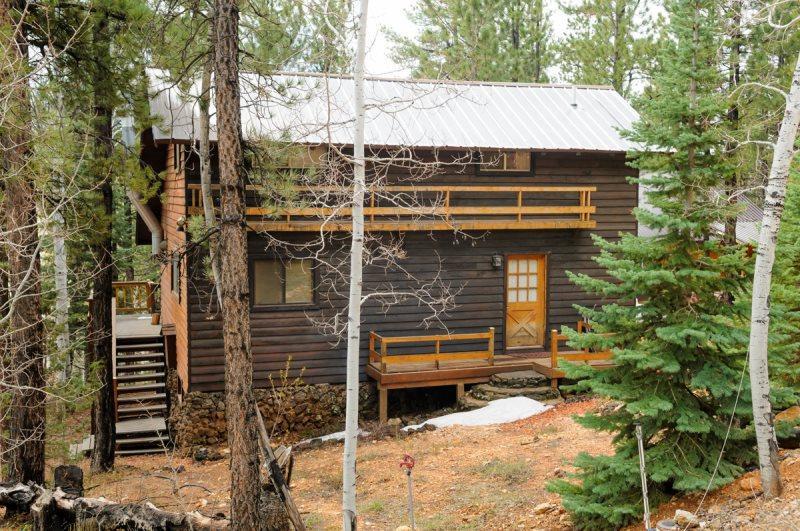 Classic Strawberry cabin - Image 1 - Duck Creek Village - rentals