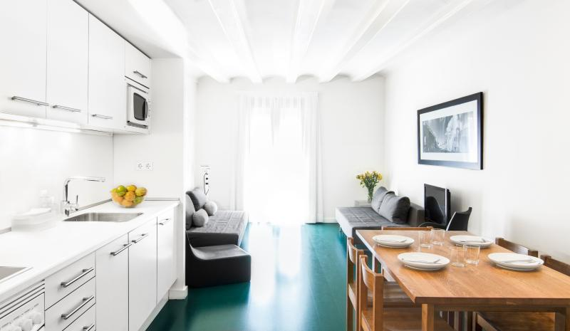 Raval Apartment 2 bedrooms - city center - Image 1 - Barcelona - rentals