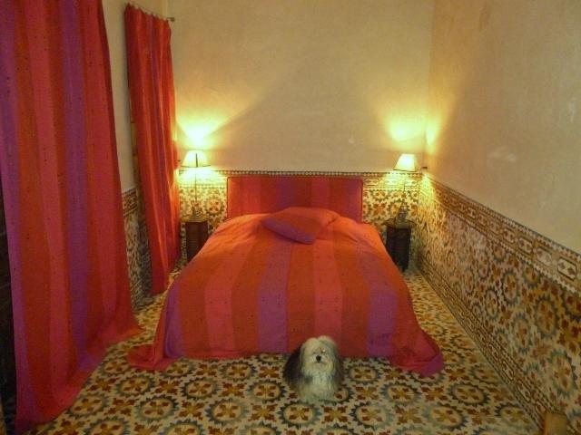 Splendid Mansion Essaouira Center Medina 2 - Image 1 - Essaouira - rentals