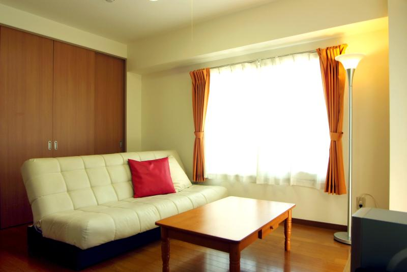 Living Room with Air Conditioning and TV - **AUGUST 10% Discount** 2BR Apartment in Tokyo! - Tokyo - rentals