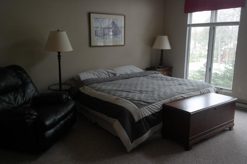 71 Blue Heron~3 Bedroom~2 Bath Sleeps 8 - Image 1 - Lake Harmony - rentals