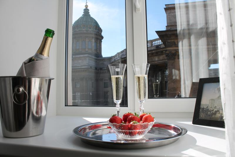 Apartment with stunning view to Kazansky Cathedral - Image 1 - Saint Petersburg - rentals
