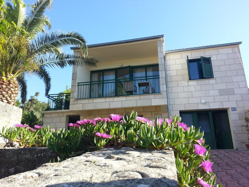 House in May 2015 - Family apt. with sea view in heart of Lumbarda - Lumbarda - rentals