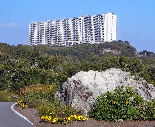 SAVE 40% at Sugartop Resort Unit 2415! - Image 1 - Banner Elk - rentals