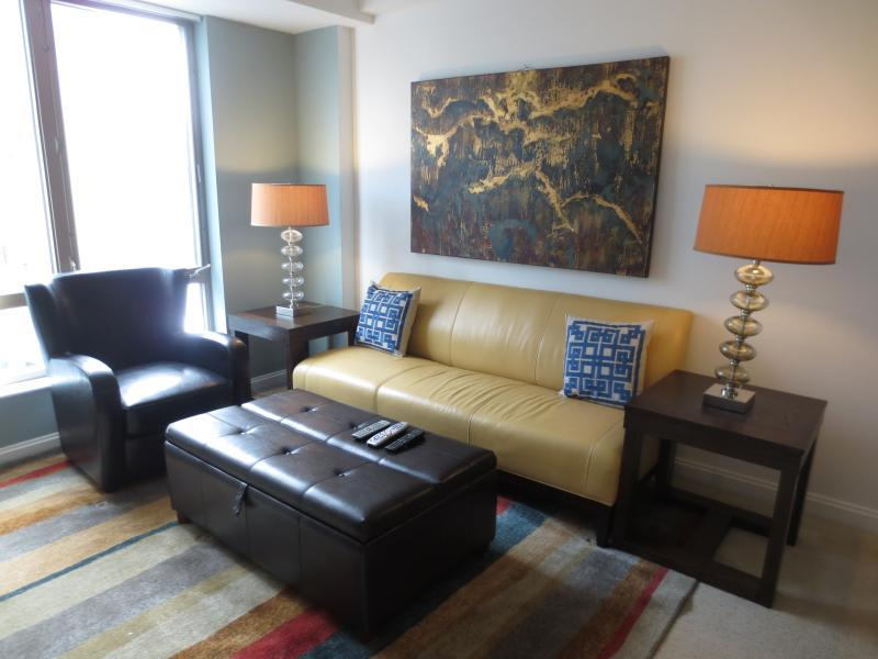 Living room - Lux 1BR Cambridge Apt w/Pool - Cambridge - rentals