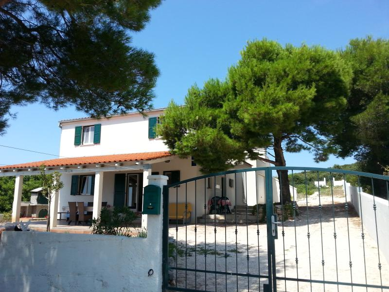Villa Voga - Image 1 - Maslinica - rentals
