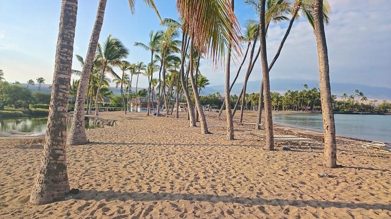 A-Bay Sandy Beach - KOLEA PenhouseVilla 16F 2/2 Direct Beach Access - Waikoloa - rentals