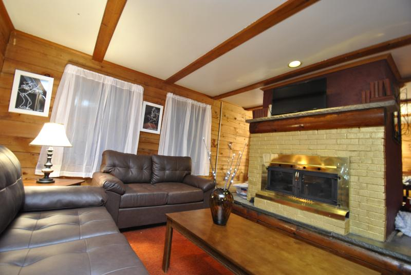 Grand Summit Lodge on Whiskey Mountain - Sleeps 21 - Image 1 - Stroudsburg - rentals