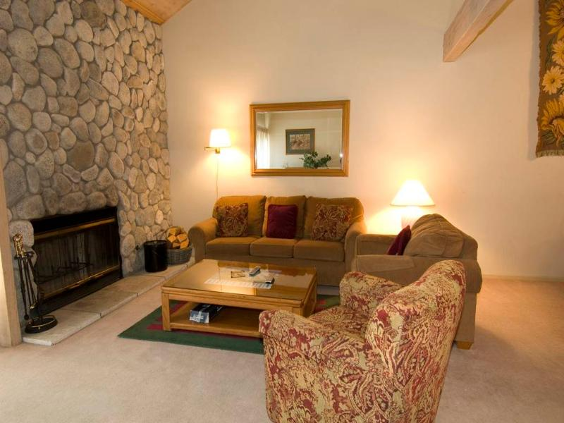#618 Golden Creek - Image 1 - Mammoth Lakes - rentals