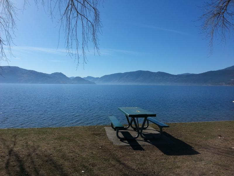 Newly Renovated Private Lake view Cottage - Image 1 - Peachland - rentals