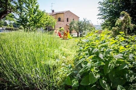 corner of spices - Il casale di Aurora Country villa,Haven Of Peace A - Colmurano - rentals
