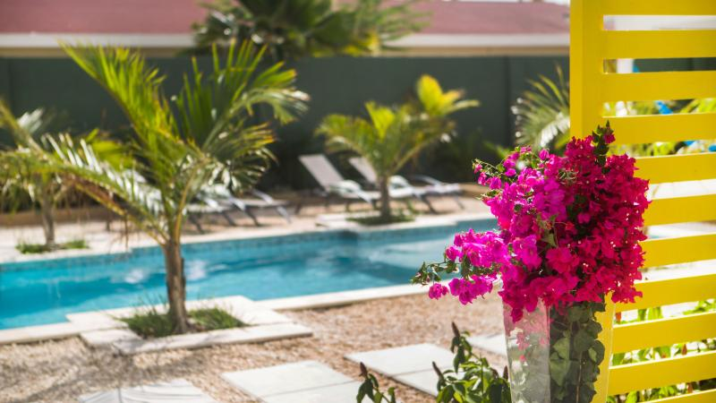 Bubali Bliss Studios Aruba - Image 1 - Palm/Eagle Beach - rentals