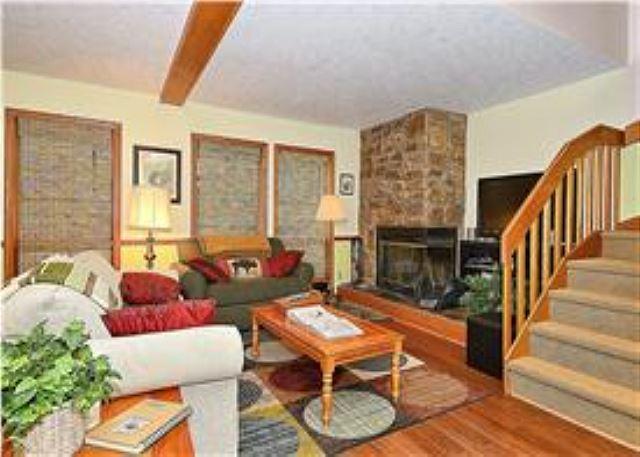 Deerfield Village 034 - Image 1 - Canaan Valley - rentals
