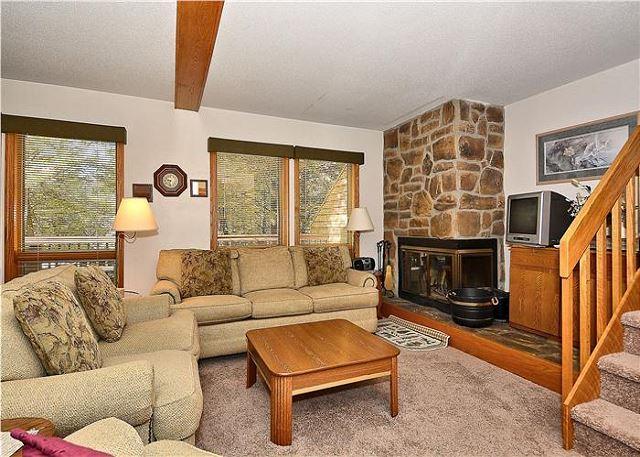 Deerfield Village 106 - Image 1 - Canaan Valley - rentals