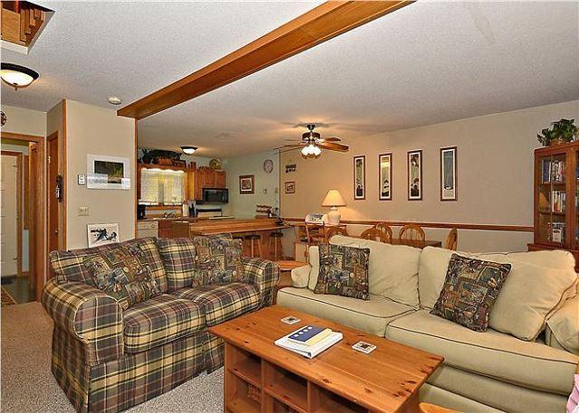 Deerfield Village 109 - Image 1 - Canaan Valley - rentals