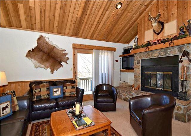Northwoods B6 - Image 1 - Canaan Valley - rentals