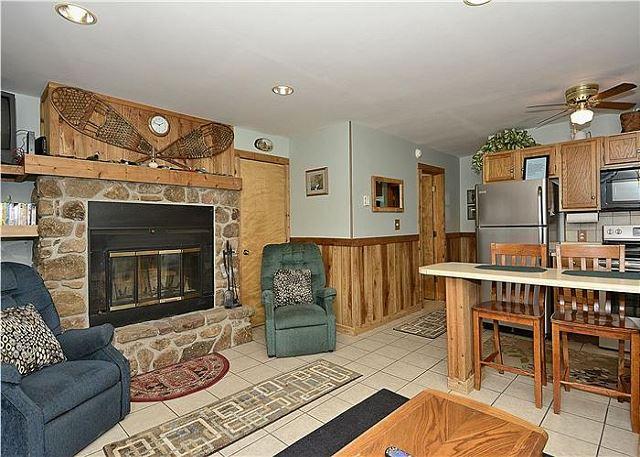 Northwoods F2 - Image 1 - Canaan Valley - rentals