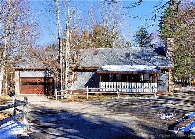 Brookside Chalet - Image 1 - Canaan Valley - rentals